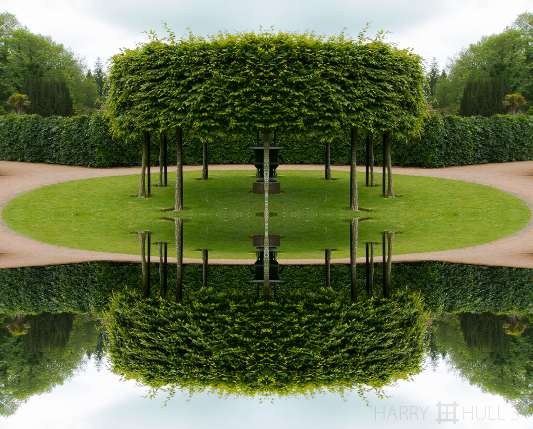 Tree folly. Photo of ring of trellised trees inside the Walled Garden on the grounds of Culzean Castle, Scotland.