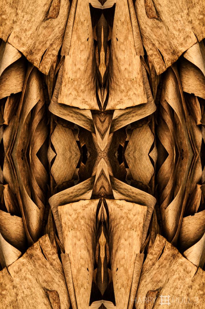 Hidden masks. Photo close-up of dry banana fronds, Finca Cantaros, San Vito, Costa Rica.