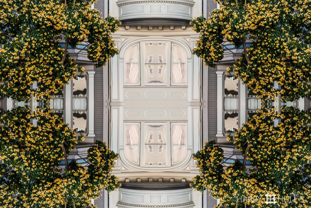 Flowering facade. Photo of facade of a house on Telegraph Hill, San Francisco, California.