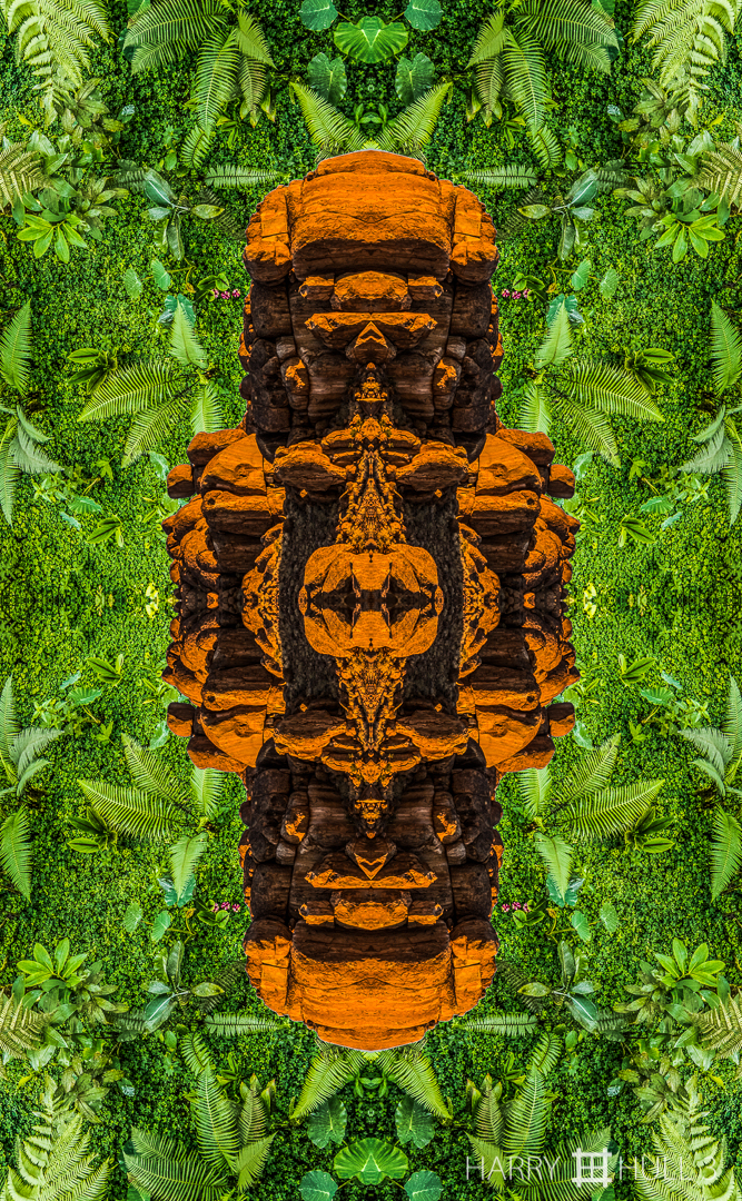 Aztec figure? Composite photo of two mandalagraphs: a granite outcropping near Soussusvlei, Namibia (turned vertical) superimposed on a garden at Mashpi Jungle Lodge, Ecuador.