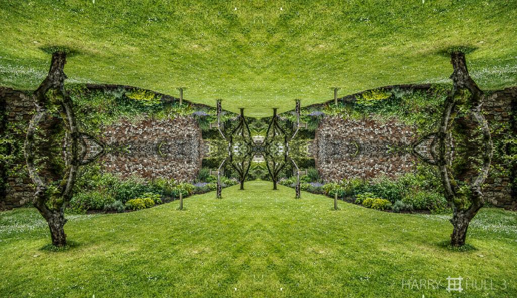 Secret garden )Mandala-HH3_120608_0653-Edit)