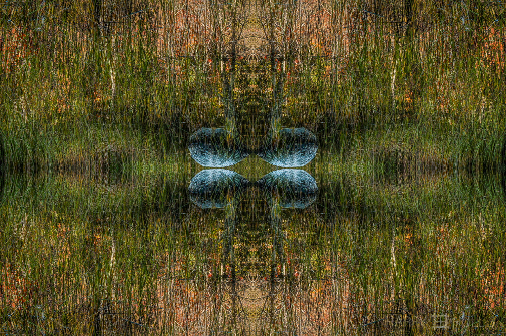 Forest-lake suspension (Mandala-HH3_121017_0564-Edit)