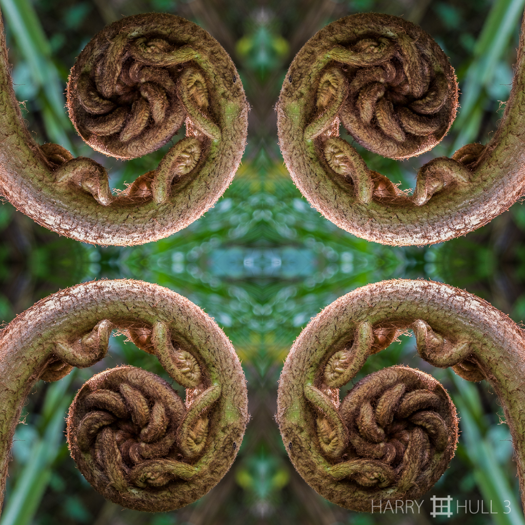 Homage to Tarxien spirals (Mandala-HH3-150322-5005F-Edit-3)