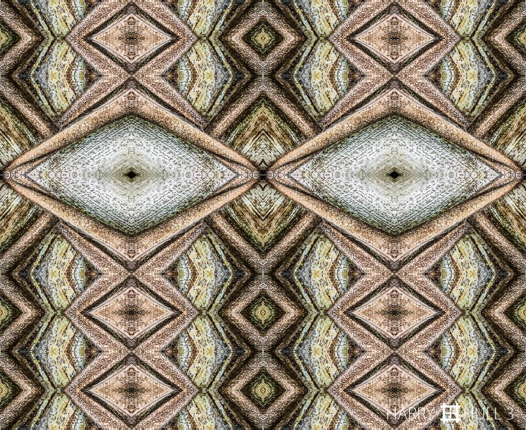 Tree frog? (Mandala-HH3_160122_3497i-Edit-2-Edit-Edit)