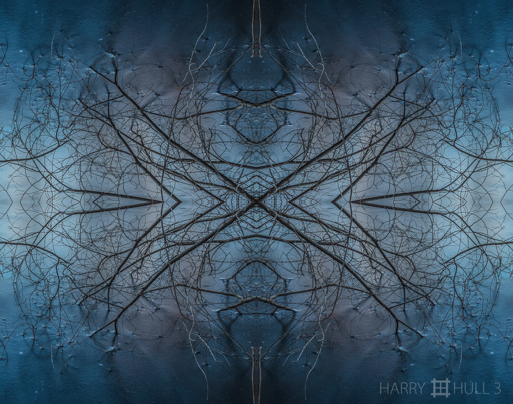 Winter graphic )Mandala-HH3_160306_7202F-Edit-2)