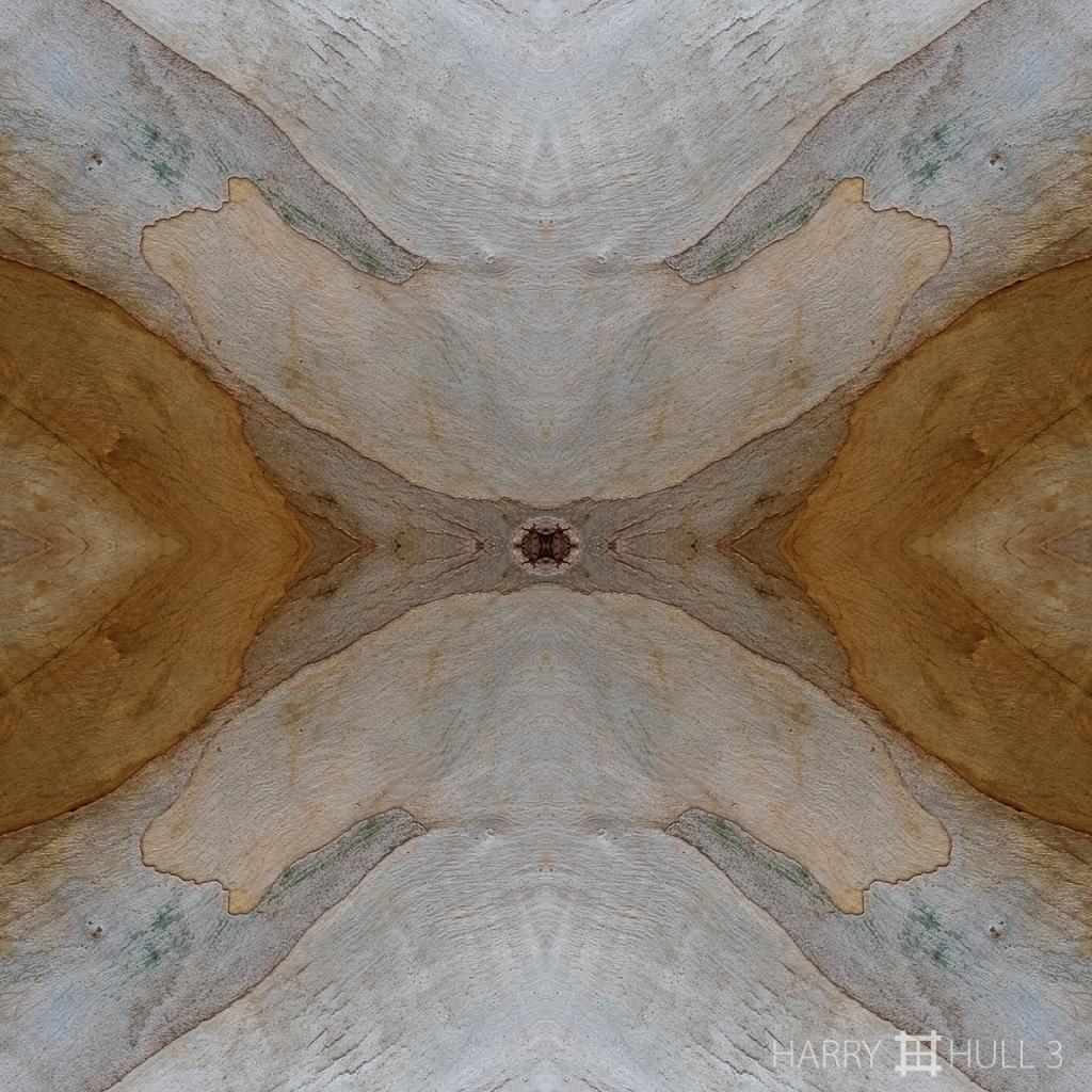 Rhytidomic landscape (Mandala-HH3_160416_7882F-Edit)
