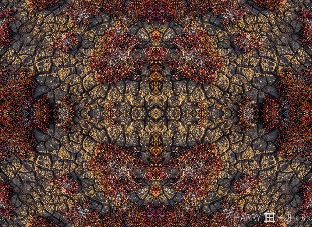 Cracked earth (Mandala-HH3_160416_7936F-Edit)